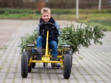 Zwolse kinderen halen recordaantal kerstbomen op en komen woensdag opnieuw in actie