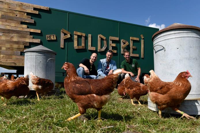 Wesly van Halen (links), Dennis Scheepmaker en Jaco de Groot bij kippenkar Het Polderei in het weiland achter de boerderij.