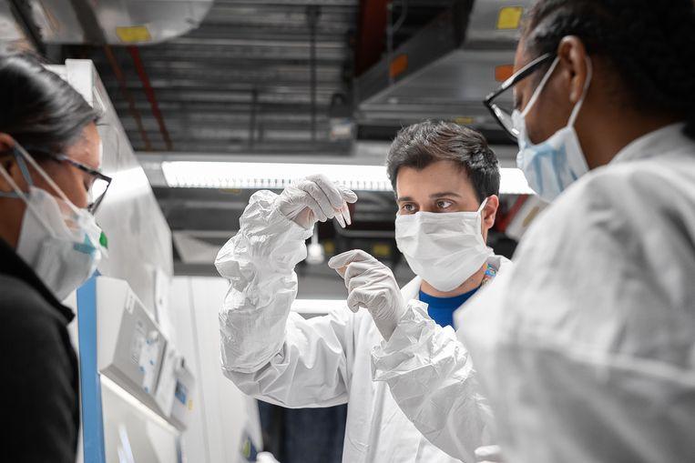 Laboranten van de het Amerikaanse biotechbedrijf Mirimus kijken naar covid-19-samples van een herstelde coronapatiënt.   Beeld Misha Friedman / Getty