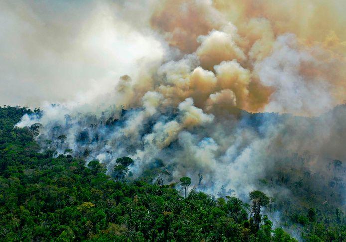 Rook kringelt op uit het Amazonewoud in Brazilië. Beeld van augustus vorig jaar.