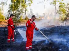 Grootste natuurbrand in Nederland ooit: zeker 800 hectare van de Deurnsche Peel in vlammen op, brand onder controle