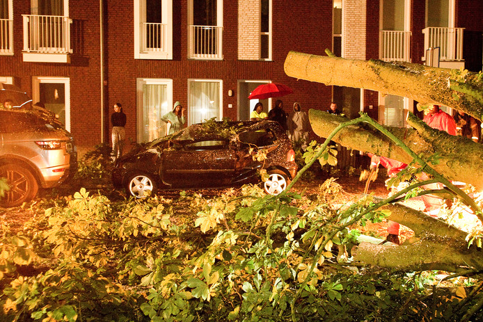 Een Range Rover en een Renault Twingo moesten het vanavond even voor 22.00 uur ontgelden. Een vallende tak verwoestte beide voertuigen. Er raakte niemand gewond