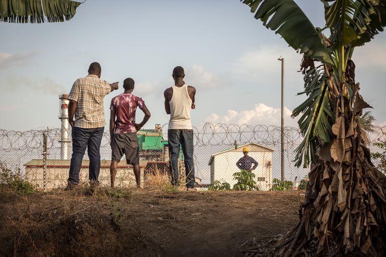 Foto: Sven Torfinn. Sierra Leone, nabij Makeni, ongeveer 200 kilometer landinwaarts vanaf de hoofdstad Freetown staat de fabriek van Sunbird Bioenergy,  Jongeren uit nabij gelegen dorp, waarvan een enkeling af en toe werk vindt achter het prikkeldraad, kijken naar de fabriek, maken een praatje van de beveiliger en vertellen hoe de komst van het project hun leven heeft veranderd. Sunbird Bioenergy, is een Brits bedrijf dat in 2016 het failliete Addax heeft overgenomen. Addax Bioenergy is in 2011 met financiering van onder andere de Nederlandse Ontwikkelingsbank FMO begonnen aan de produceren van biofuel van rietsuiker voor de Europese markt. Daarvoor zijn velen duizenden hectare grond geleast van lokale boeren en volgezet met irrigatiesystemen. Het water wordt uit de nabij gelegen rivier gepompt. De lokale bevolking was werk beloofd, scholen, ziekenhuisje, ontwikkeling. Addax ging failliet, FMO trok zich stilletjes terug en de mensen bleven berooid achter. Sunbird probeert het project nieuw leven in te bazen. Balanceert op de erfenis. Is afgestapt van biofuel omdat populariteit in Europa tanende is. Beter suiker produceren en elektriciteit voor lokale markt. En probeert de verwachtingen en beloftes tot commercieel haalbare proporties terug te brengen. Maar zoals de directeur van Sunbird zegt, daar waar ontwikkeling of industrialisatie komt moeten offers ingecalculeerd worden. Hetzij onvermijdelijke schade aan de natuur dan wel verstoring van levenskwaliteit en een zekere sociale ontwrichting bij oorspronkelijke bewoners. En de directeur kan het weten want hij komt uit India. Beeld