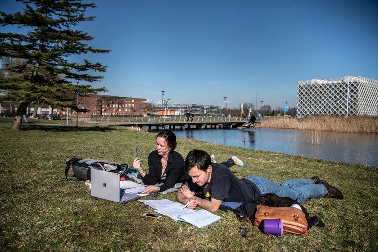 Studenten uit Wageningen studeren buiten op de campus.  Beeld Koen Verheijden