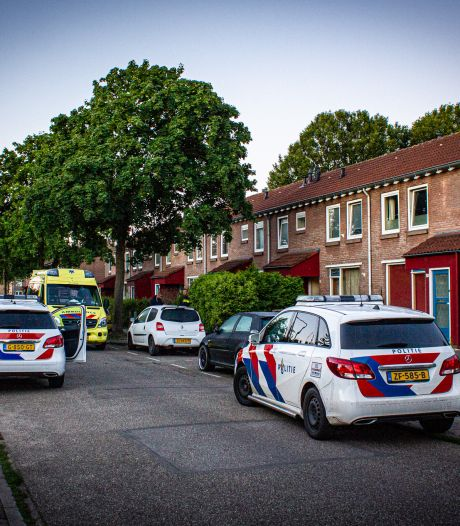 Man (33) uit Eerbeek aangehouden voor geweldsincident in Dieren