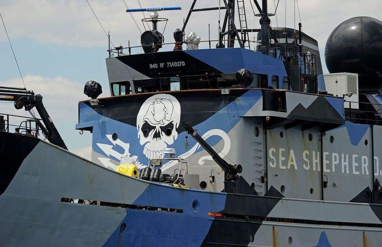 Het schip 'Steve Irwin' van Sea Shepherd ligt voor anker vlakbij Perth, Australië, vorige week. Beeld afp