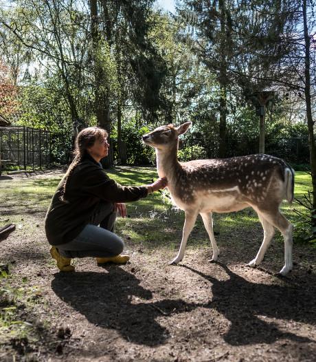 Lintje voor echtpaar dat 4.000 dieren per jaar opvangt