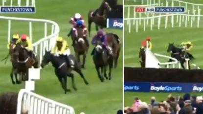 Jockey is op weg naar prestigieuze zege, tot hij uitpakt met wel heel bizarre actie (met zijn paard en hijzelf als zwaarste slachtoffers)