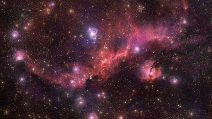 Grootste surveytelescoop ter wereld schiet indrukwekkende beelden van 'kosmische zeemeeuw'