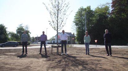 Op de vooravond van de 'Dag van de Vrede': Vredesplein Vinderhoute gaat open na renovatie