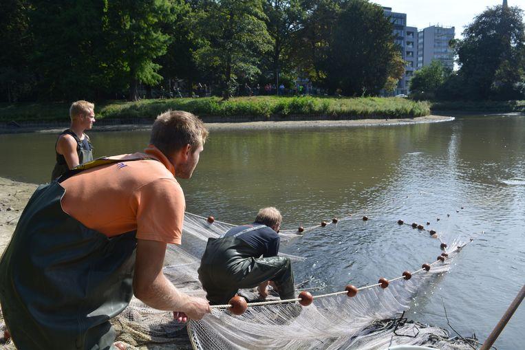 De vijver in het Stadspark wordt leeggevist.