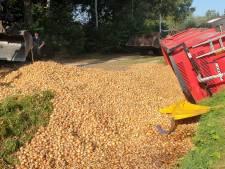Tractor verliest lading uien na botsing met auto in Lieshout
