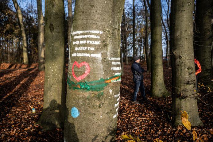 Zondagmorgen was er al een eerste actie om de kap van de bomen in Park Klarenbeek tegen te houden.
