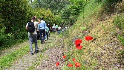 Natuurpunt Holsbeek organiseert cursus natuurgids