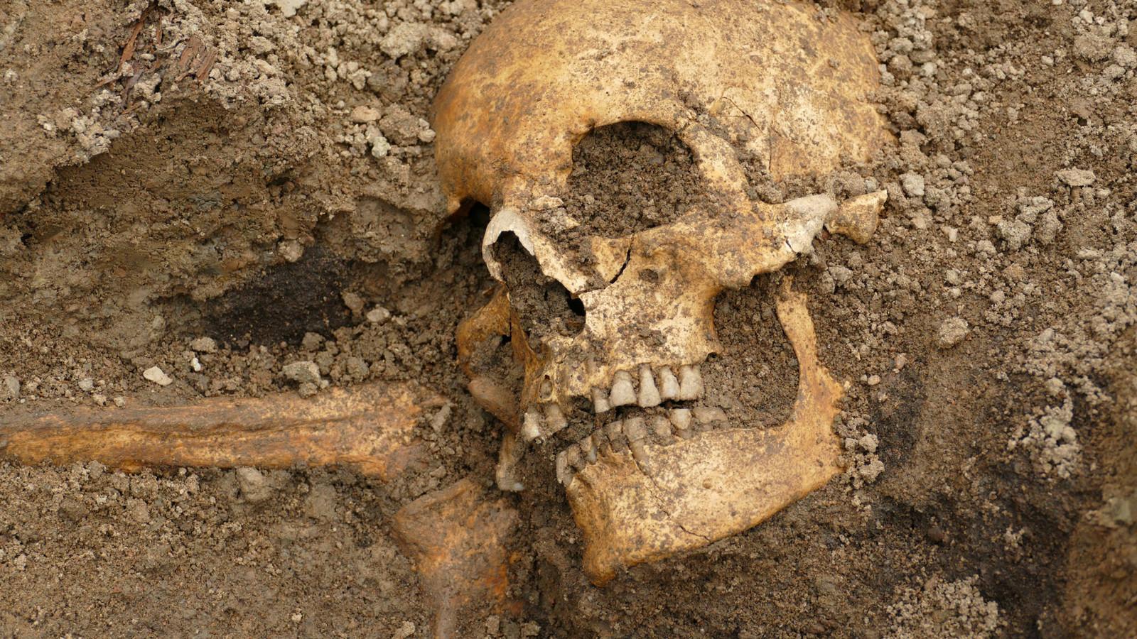 Des scientifiques ont découvert deux tombes dans la ville suédoise d'Uppsala.