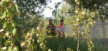 Bosbrand Gendtse Polder maar net afgewend: 'Wees voorzichtig met vuur'