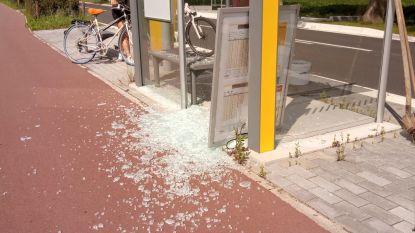 Opnieuw bushokje aan diggelen geslagen langs Tervuursesteenweg
