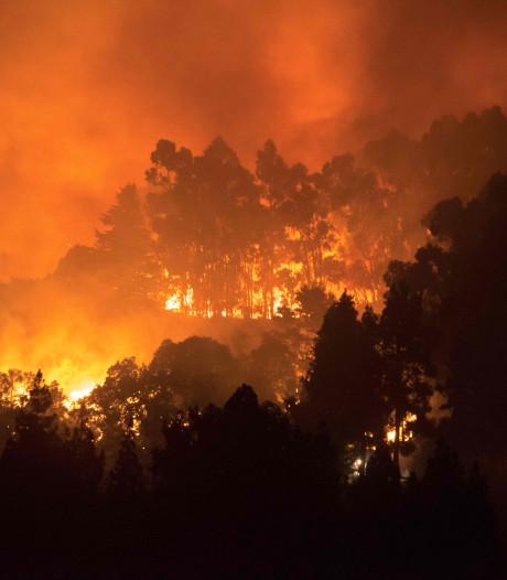 Dorp en luxe hotel Gran Canaria ontruimd na nieuwe bosbrand