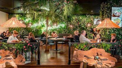 """Hawaiiaans eethuis opent eind maart op Grote Markt: """"Gezond alternatief voor fastfood"""""""