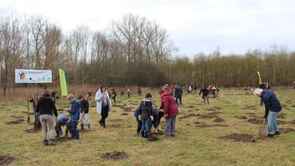 Leerlingen planten bomen en struiken aan in de Grote Getevallei