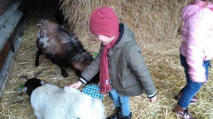 Kinderboerderij Den Ast blijft voorlopig dicht