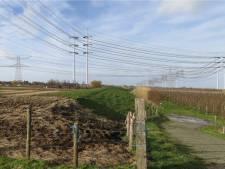 Vandaag extra zitting Raad van State: kan de 380kV-lijn bij Krabbendijke wel of niet onder de grond?