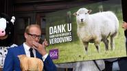 Vlaams Parlement keurt verbod op onverdoofd slachten quasi unaniem goed, slechts één onthouding