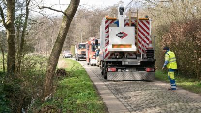 Elektriciteitskabel vat vuur in Riemeersstraat