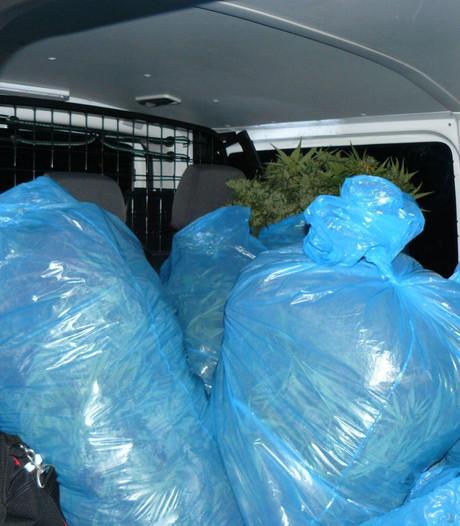 Politie ontmantelt hennepkwekerij met 400 planten in Almelo