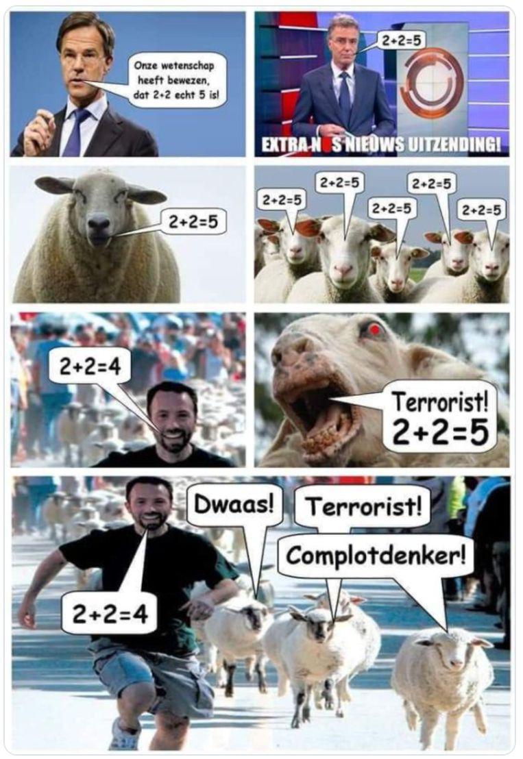 Een meme laakt vermeend kuddegedrag. Beeld