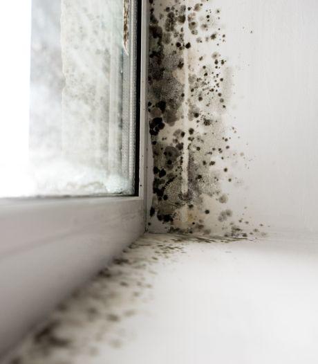 Zo houd je vocht uit huis: hang de was buiten te drogen en trek je douche droog