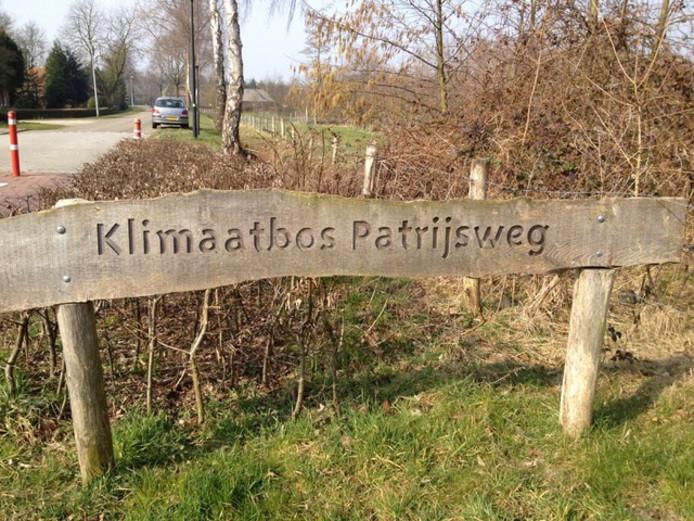 Het klimaatbos in Uden. De Bossche Groenen wil een bos op pachtgrond van de gemeente.