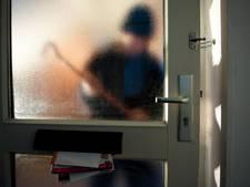 Werkendammer lichtgewond na worsteling met inbreker