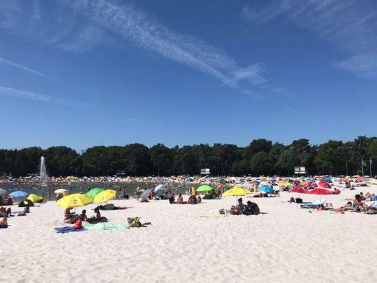 Op het Zilvermeer in Mol zul je per bubbel van maximaal vier een parasol moeten zetten op het strand of de ligweide om de afstand te bewaren. Wie er geen heeft, kan er eentje huren.