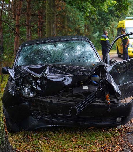 Auto vliegt uit de bocht in Tilburg en komt tegen boom tot stilstand