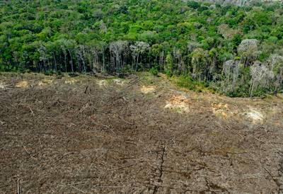 La déforestation en Amazonie brésilienne au plus haut depuis 12 ans