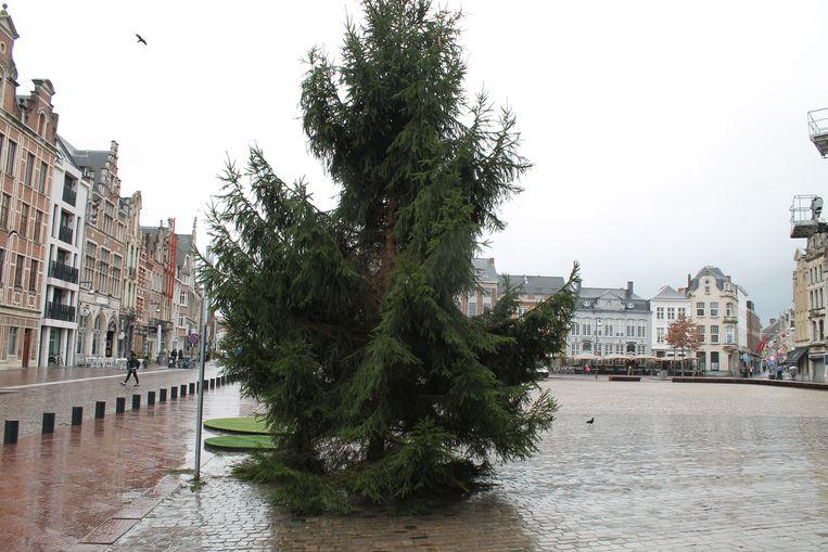 De kerstboom voor het stadhuis van Lier is maar een 'mager beestje'.