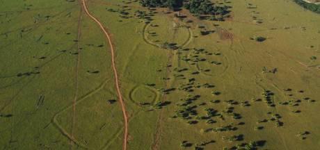450 eeuwenoude 'Stonehenges' ontdekt in Amazonegebied