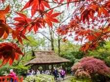 Japanse Tuin gaat ook dit najaar niet open