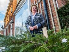 Dieven stelen Nuala's kerstboom op haar 79ste verjaardag: 'Super schandalig'