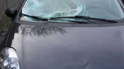 Elke dag chauffeurs zonder rijbewijs voor rechter