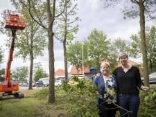 Irma van Frans op den Bult ziet het wandelbos als haar nalatenschap