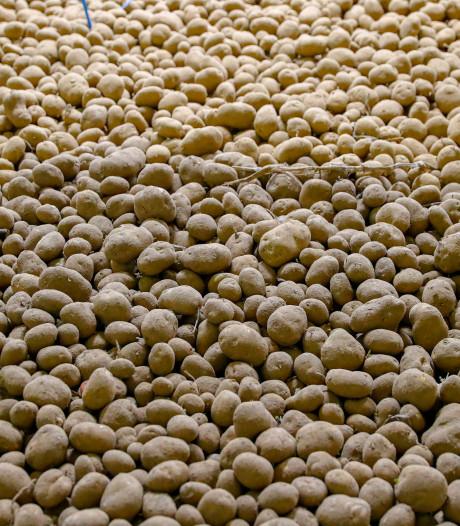 Illegaal overnachtende chauffeurs en geluidsoverlast: dwangsommen voor aardappelhandelaar terecht