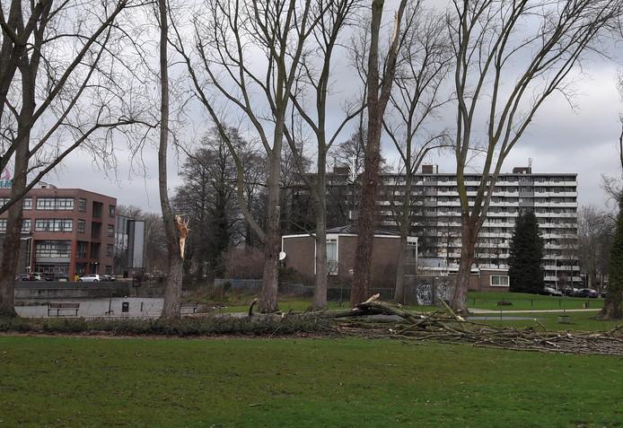 Genderpark Eindhoven
