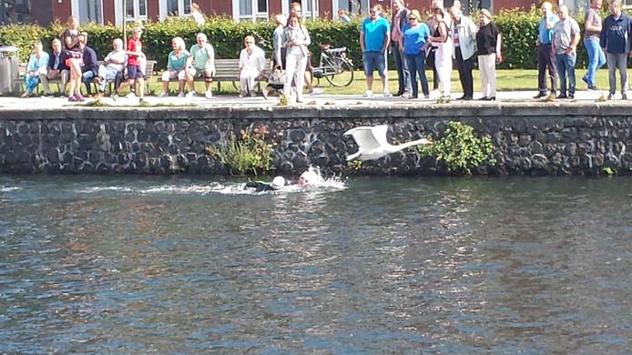 De eerste twee zwemmers (Maarten van der Weijden) worden ingehaald door een vliegende gans tijdens Swim to Fight Cancer in Apeldoorn op zondagmiddag 18 september