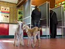 Dit zijn de leukste plekken om te stemmen in Den Haag