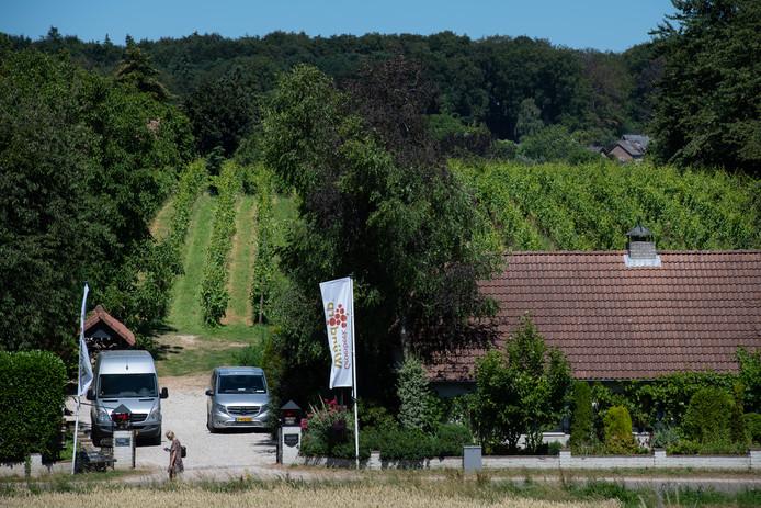 Wijnhoeve de Colonjes.