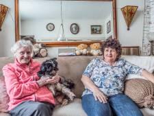 Heilige Land bereidt zich voor op dramatisch afscheid van geliefde witte huisjes