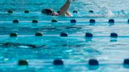 Zwembad Ieperman tijdelijk gesloten na waterlek: technische ruimte zwembad volledig ondergelopen