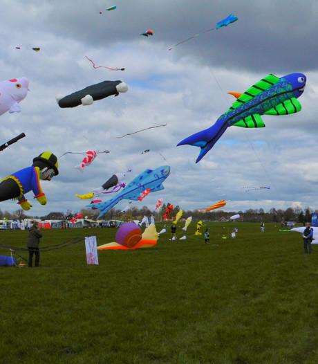 Groots driedaags vliegerfestival in Renesse